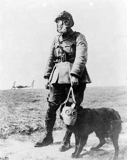 Военный с собакой в противогазах